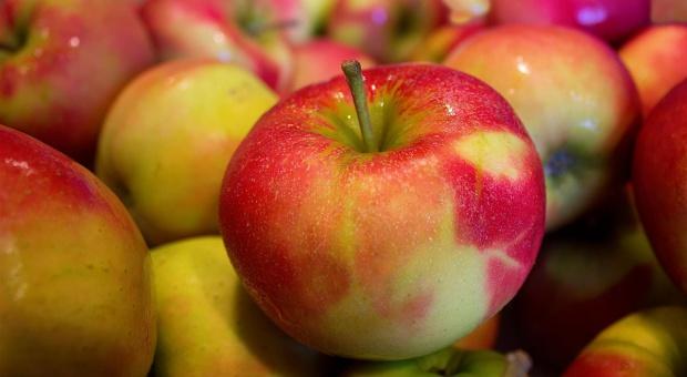 """""""Gazeta Wyborcza"""": Chińczycy kupią nasze jabłka"""