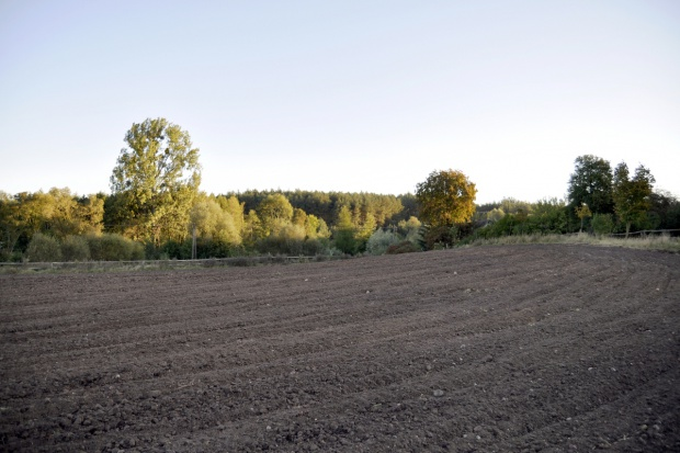 Nowoczesna złożyła projekt noweli ustawy o ziemi rolnej