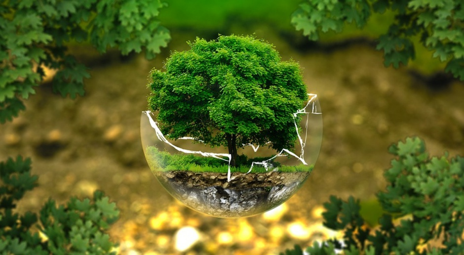 150 mln zł od NCBR - na innowacje na rzecz środowiska