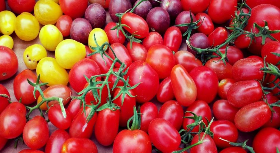 Bułgaria skazana na import żywności