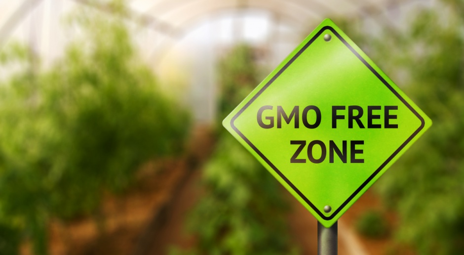 PIM: Wzrasta popularność produktów bez GMO