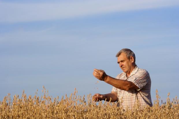 Rolnik – właściciel, ale i świadczeniobiorca KRUS