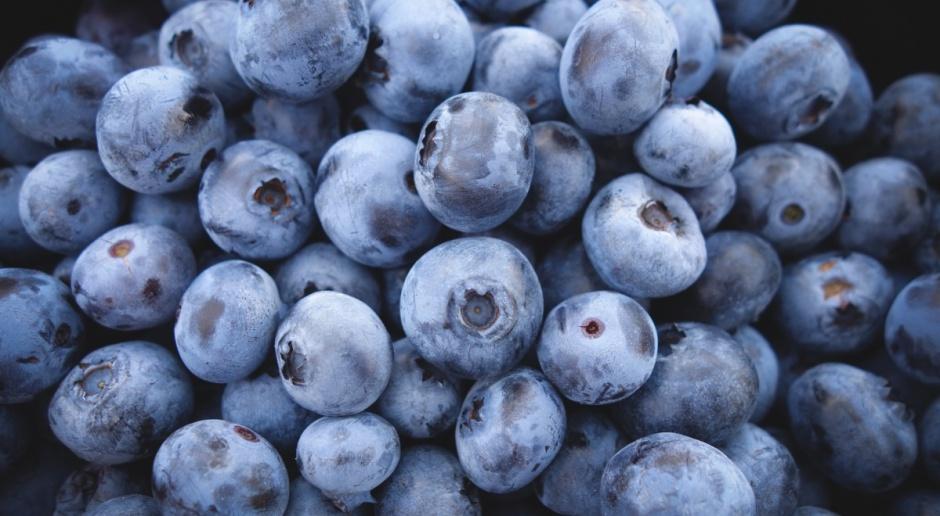 Polska potentatem w Europie w produkcji owoców jagodowych