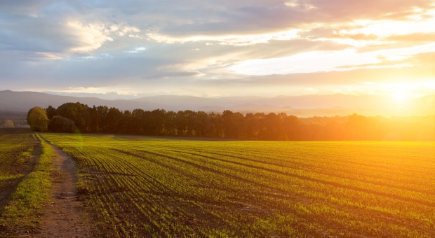 Trzy projekty nowelizacji zasad sprzedaży ziemi