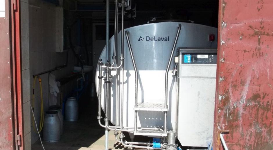 GDT: Minimalny spadek wartości produktów mlecznych