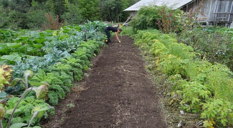 """Będą zmiany w """"Działaniu rolno-środowiskowo-klimatycznym"""""""
