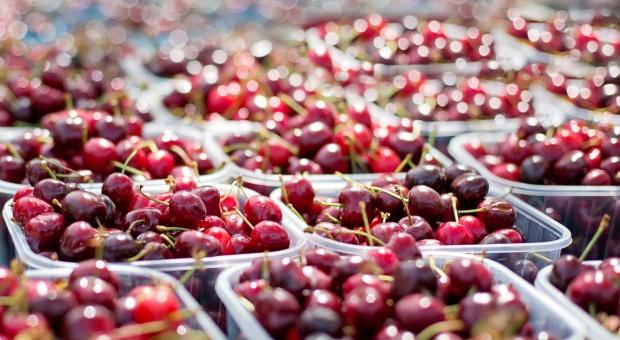 Niemcy: Mniej wiśni, więcej czereśni