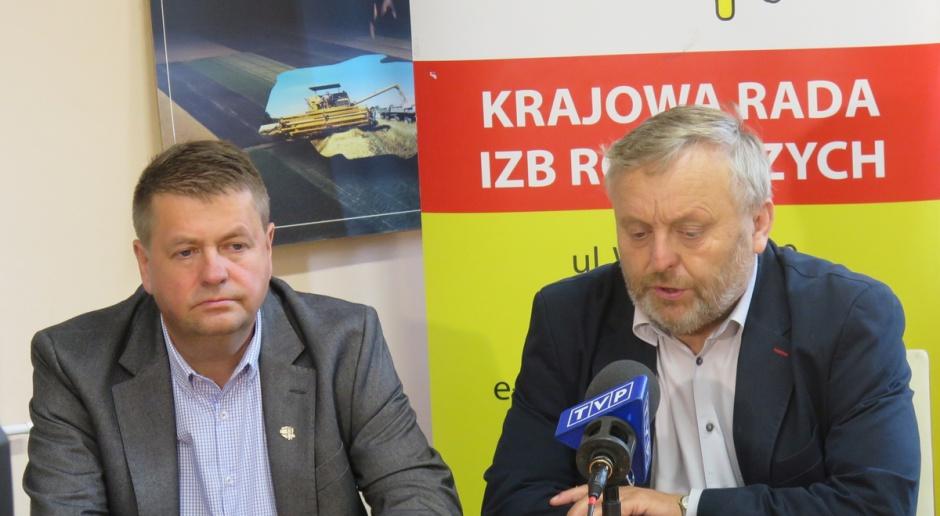 Szmulewicz: Polska powinna bronić się przed zbożem z Ukrainy
