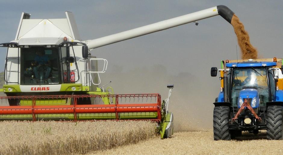 Średnia krajowa cena skupu pszenicy w I półroczu 2016 r. wyniosła  63,68 zł za 1 dt