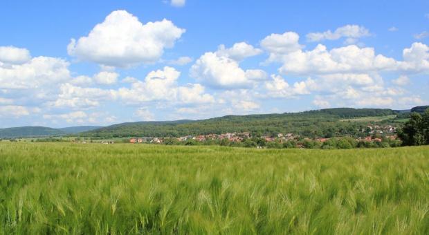 Jednomyślne poparcie Senatu wobec nowelizacji obrotu ziemią rolną