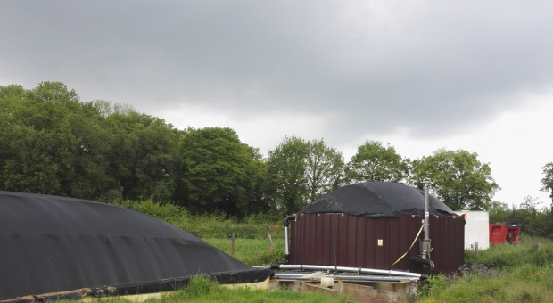 Biogaz z obornika – przykład z Francji