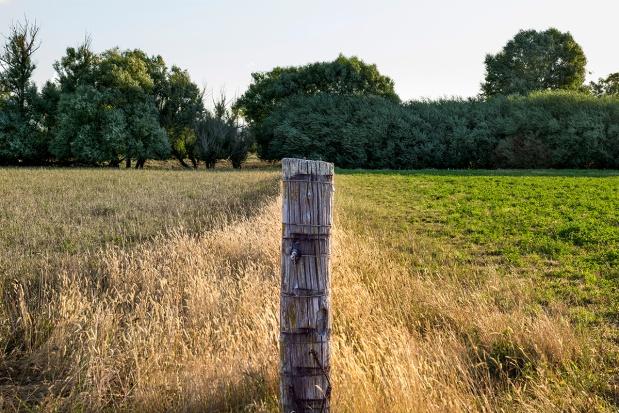 Immisje, czyli uciążliwości sąsiedzkie – cały artykuł