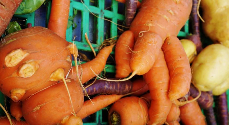 Brzydkie warzywa i owoce zdobywają serca Kanadyjczyków
