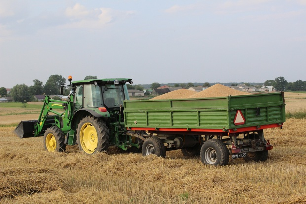 Ceny zbóż w równowadze