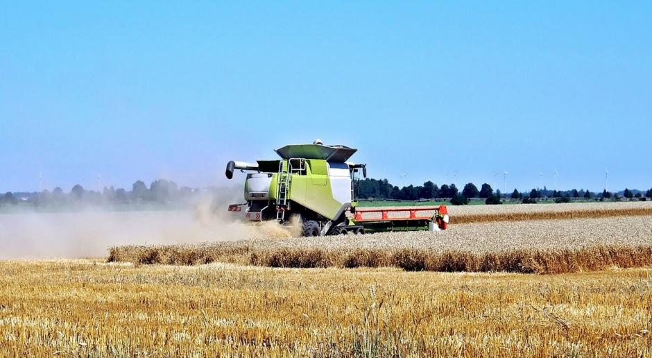 Francja: Straty rolników w wyniku nieudanych żniw szacowane na 2 mld euro