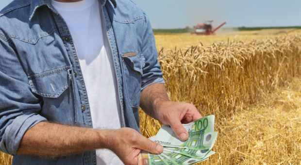 ARiMR: tylko do 30 czerwca można ubiegać się m.in. o premie dla młodych rolników