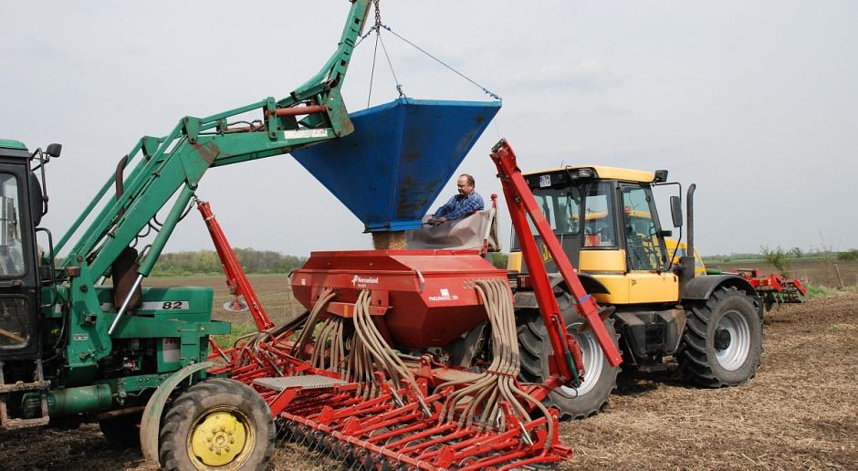 Ile wysiać nasion zbóż?