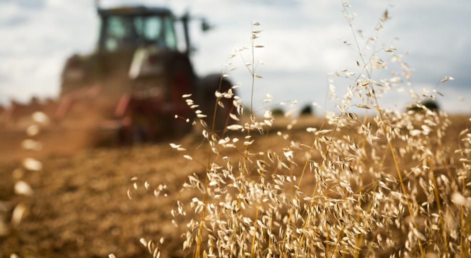 Rolnictwo jednym z ważnych obszarów w KE