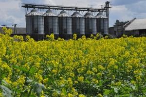Rolnicy mogą zgłosić zmianę zadeklarowanego proekologicznego elementu