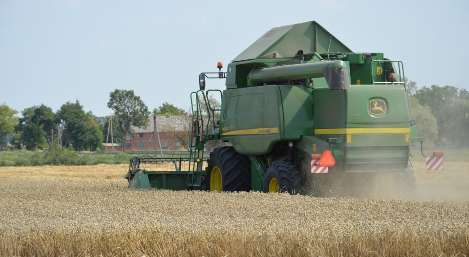 Niemcy: Rzepak i pszenica poniżej średniej pięcioletniej