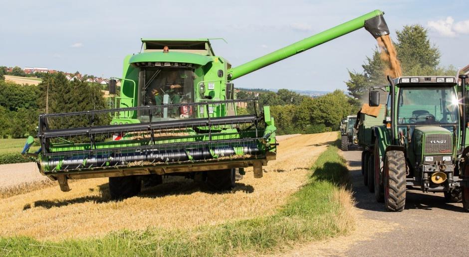 FAO: Prognoza dla światowego rynku zbóż
