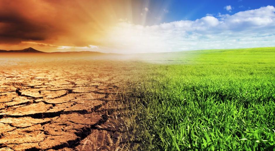 Senat powołał komisję nadzwyczajną ds. klimatu