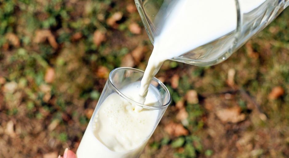 Wzrosła światowa cena mleka