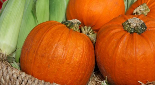 Bronisze: Na jesieni na rynku hurtowym królują dynie