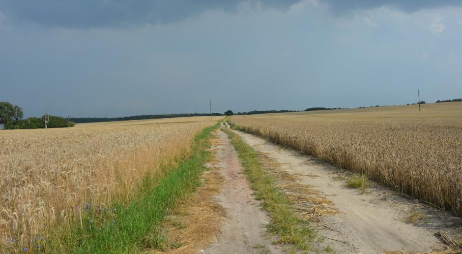 Bayer o przyszłości rolnictwa