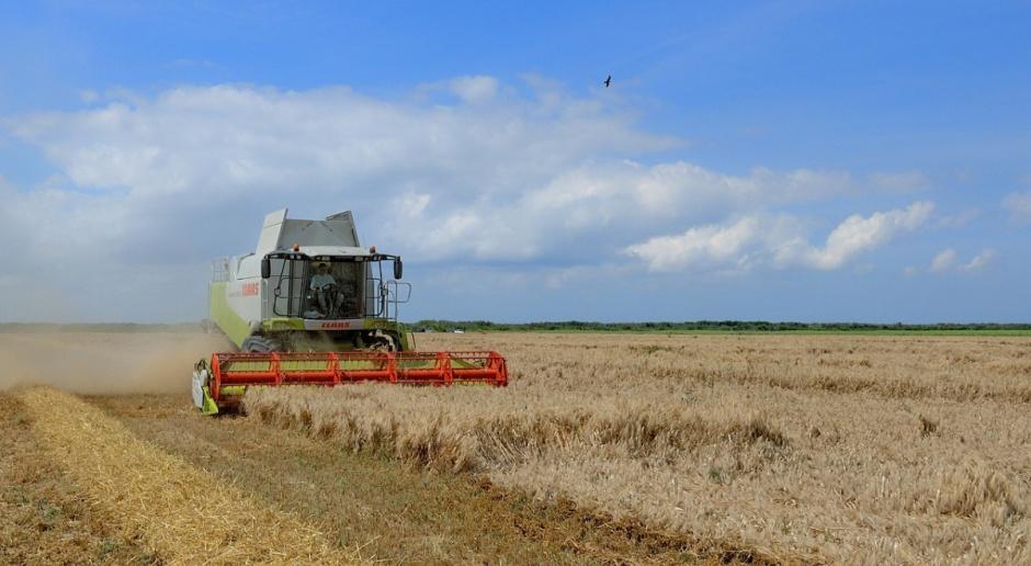FAO: Wzrost prognozy światowej produkcji zbóż w sezonie 2016/2017