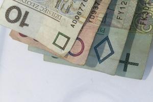 Dopłaty bezpośrednie od trzech lat bez większych zmian