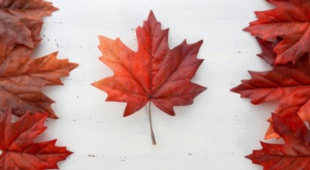 Szczyt UE - CETA: Sprzeciw Walonii i kanadyjskie wizy