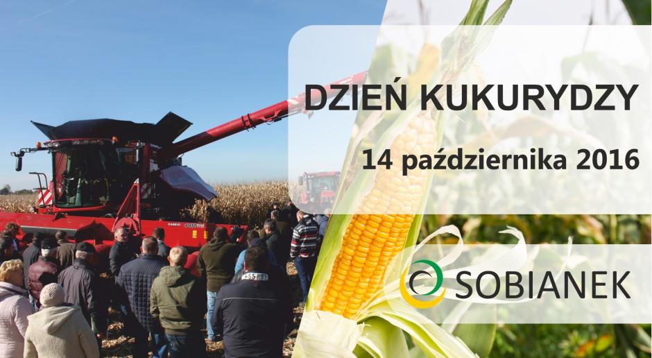 Dzień Kukurydzy firmy SOBIANEK za nami