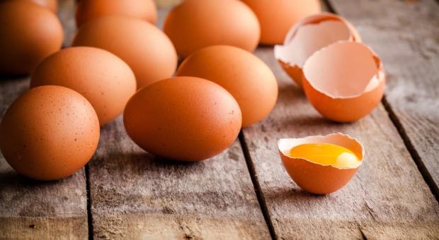Czesi o wykrytej salmonelli: I tak nie zastąpimy polskich jajek