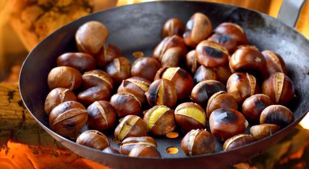 Europejskie tradycje kulinarne na obchody dnia św. Marcina