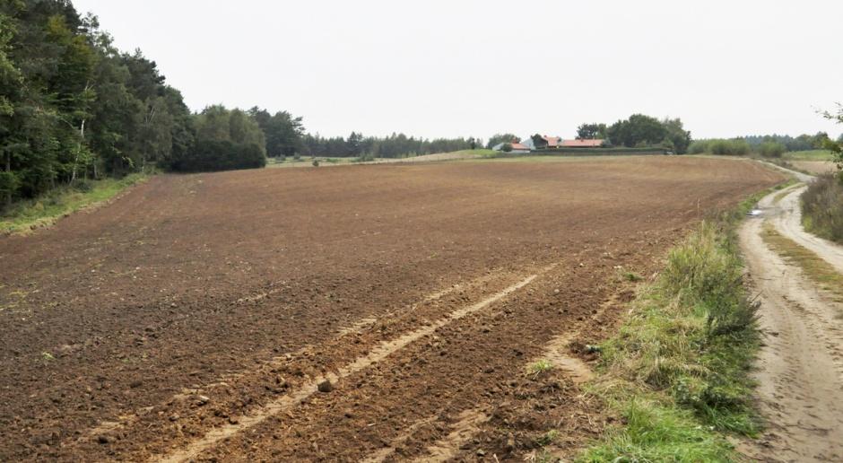 """Ukraina: Politycy """"kradną"""" 5 milionów hektarów ziemi"""