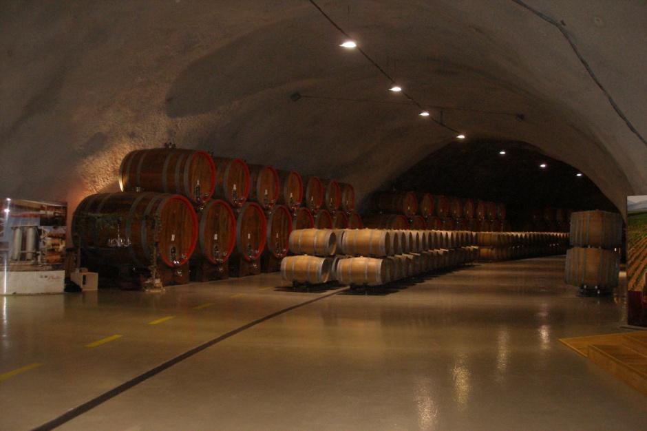 W tej piwnicy leżakuje w beczkach 2 mln butelek wina (Fot.JK)