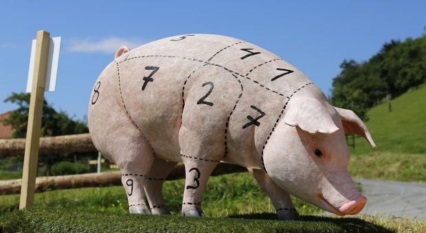 Co wpływa na ceny świń w strefie ASF?