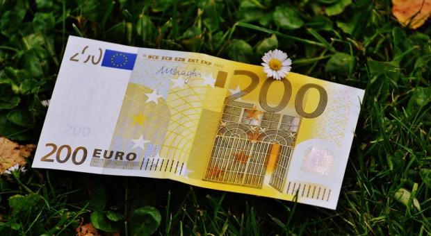 Niemieccy rolnicy narzekają na niskie dochody