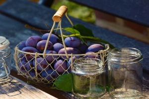 Jakie wymagania dla rolników - producentów dżemów?