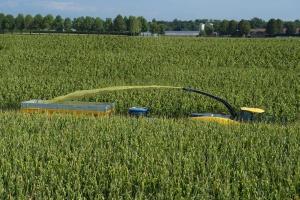 Zawiesili wałek w kukurydzy – straty na 70 tys. zł