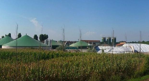 Produkty biogazowe doprowadzą do potanienia nawozów organicznych?