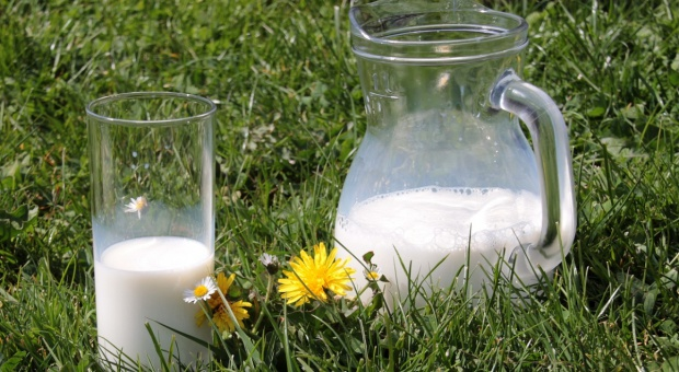UE: Coraz wyższe ceny mleka