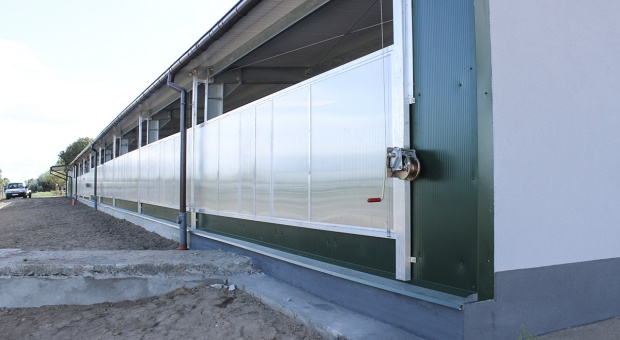 Alternatywa dla okien w oborze