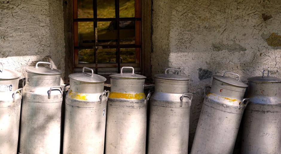 ARR przyjmuje wnioski o płatność na ograniczenie produkcji mleka