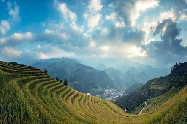Chiny: Mniejsze zbiory roślin uprawnych w 2016 r.
