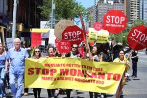 UE: Inicjatywa obywatelska w sprawie zakazu stosowania glifosatu