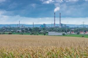 Polskie badania potwierdzają: Smog szkodzi układowi krążenia
