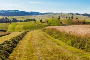 Rząd przyjął projekt ustawy o Krajowym Ośrodku Wsparcia Rolnictwa
