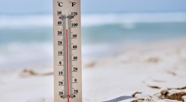 Raport: 2016 najgorętszym rokiem w historii badań nad klimatem